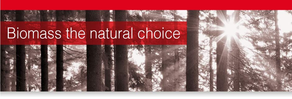 Biomass The Natural Choice